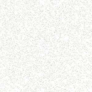 Rockfon Blanka G 600x1200 directe montage